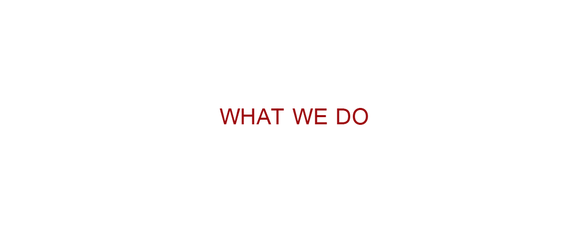 What_we_Do-